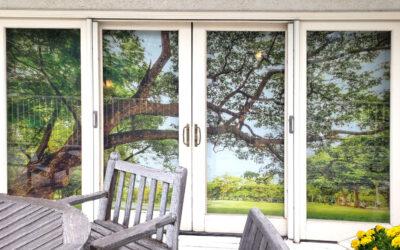 Lakeside Residence (living room) |  Orange, CA