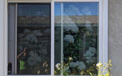Ground Floor Studio Apartment – Privacy Window Shade